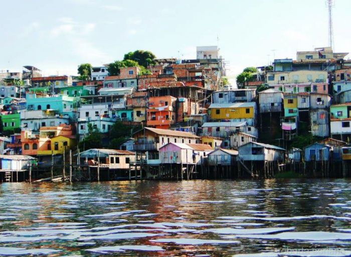 jungle-city-manaus